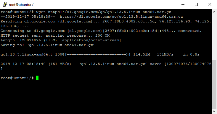 Wget Linux Go Binary Downloaded